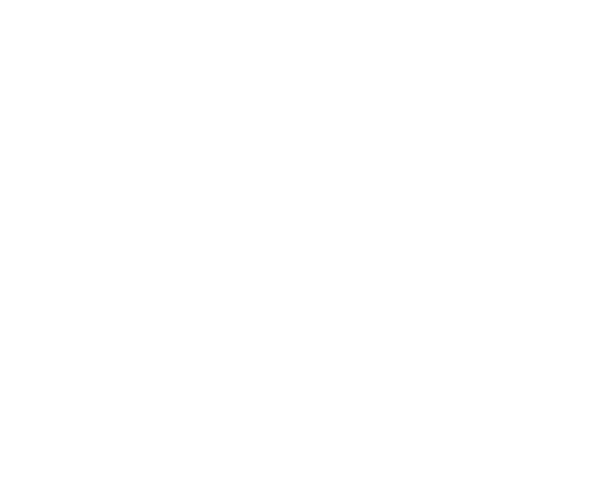 Healthy Families Hutt Valley